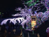 IMG_YomiuriLand_12