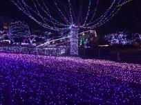 IMG_YomiuriLand_10
