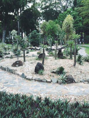mini-park