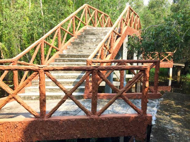 bridge-malalauca-forest-tanlap-longan-vietnam