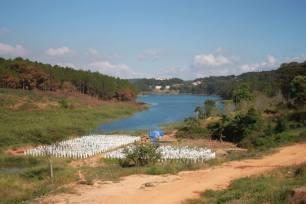 strawberry-farm-lake-mountain-thebroadlife-travel-dalat-vietnam