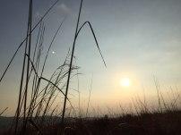 grass-sun-twilight-mountain-top-tanang-phandung-camping-thebroadlife