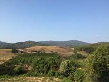 trekking-tanang-phandung-thebroadlife-travel-tree-sky